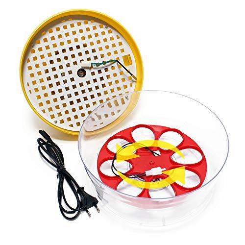 Automatische Brutmaschine Inkubator für 8 Eier - 2