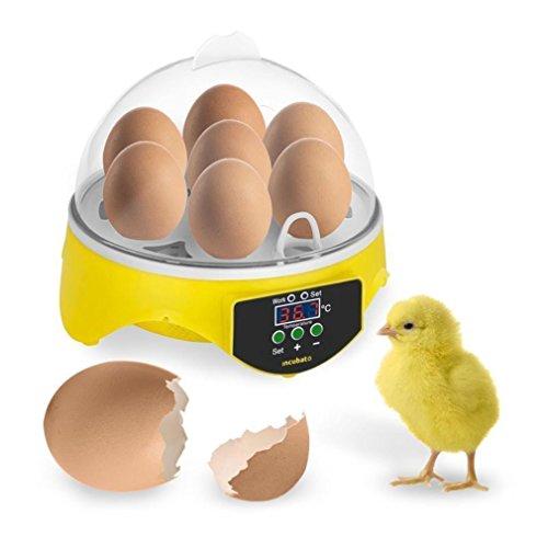 7 Eier Mini Digital Inkubator Vollautomatische Brutmaschine