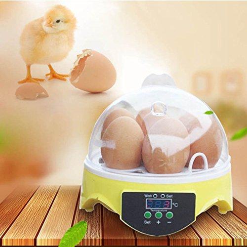 7 Eier Mini Digital Inkubator Vollautomatische Brutmaschine - 3