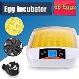 Pujuas Inkubator Vollautomatische 56 Eier Intelligentes digitales Brutmaschine Brutkasten Brutapparat Gerät Inkubationszeit ist Eclosion-Küken Brutmaschine 56 Eier - 2