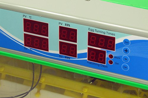 HeuSa Tech Brutmaschine BK55LUX Modell 2018 Low Noise VOLLAUTOMATISCH + Zubehör, 55 Eier, Brutautomat, Inkubator - 3