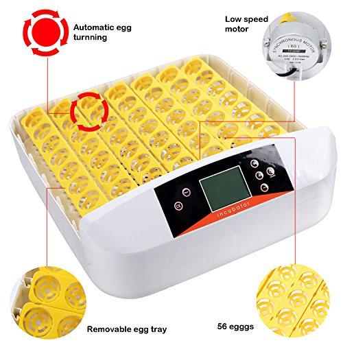 Buyi-World 56 Eier Inkubator Vollautomatische Flächenbrüter Brutmaschine Brutkasten Brutapparat - 5